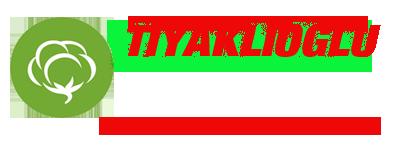 WebSiteSatisi.com | Kurumsal 21